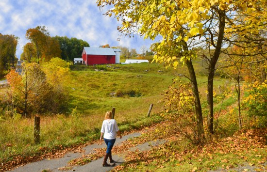 Nature puts on a glorious display in Monroe County - West