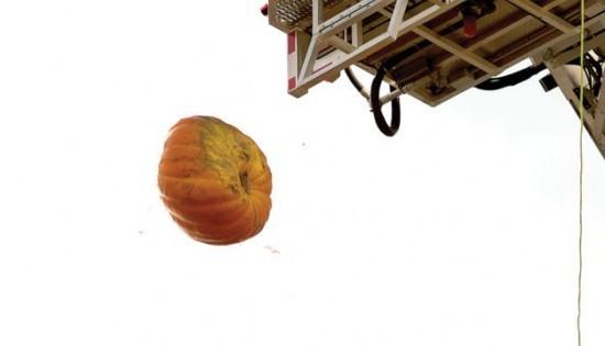 Elkins kids watch a big pumpkin go splat